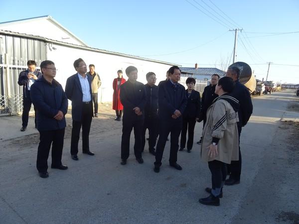 省委第一巡回指导组深入呼玛镇荣边村落地快3急速赛车进行调研